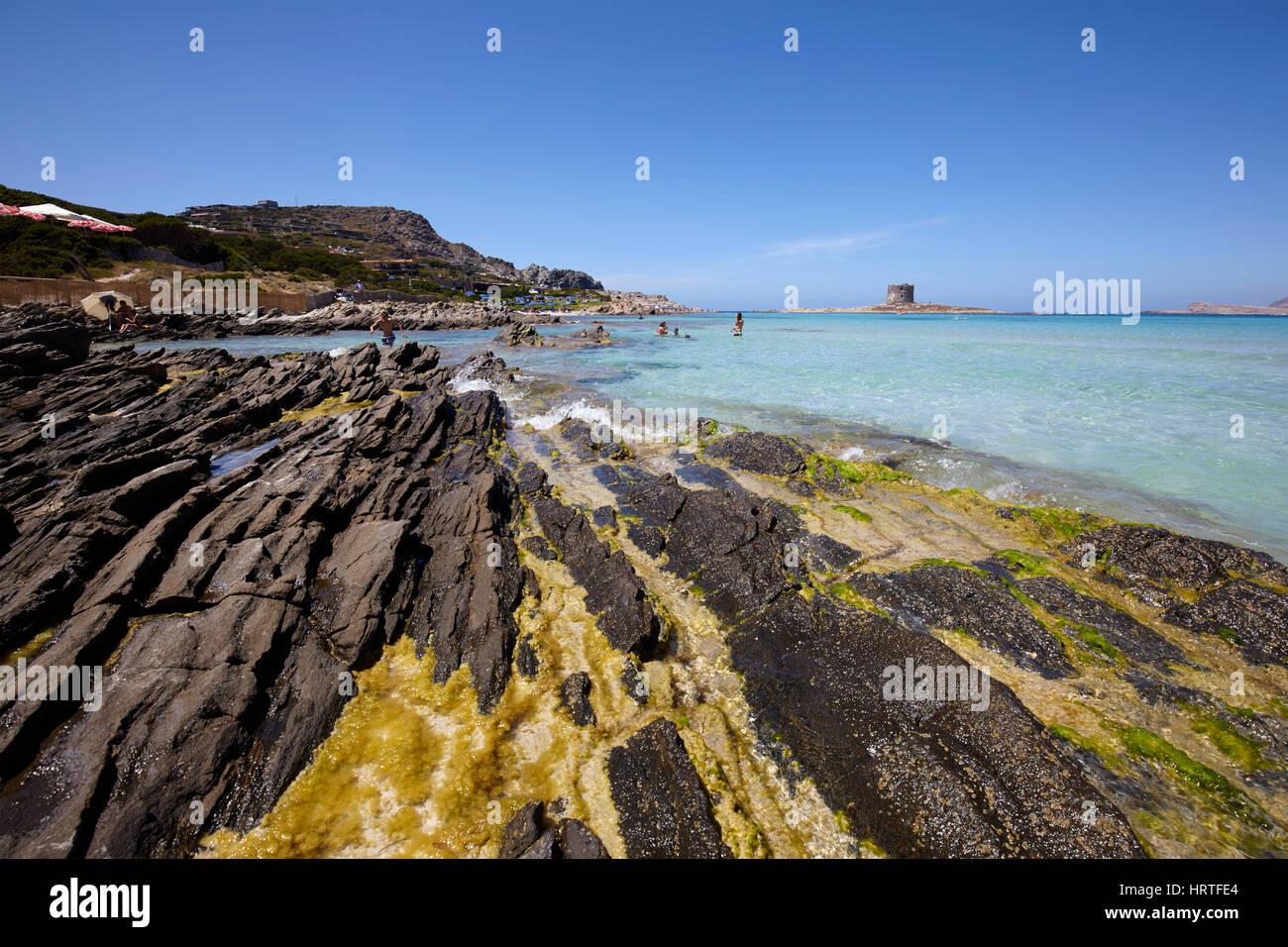 El mar en Stintino con la torre de la Pelosa, Cerdeña, Italia Imagen De Stock