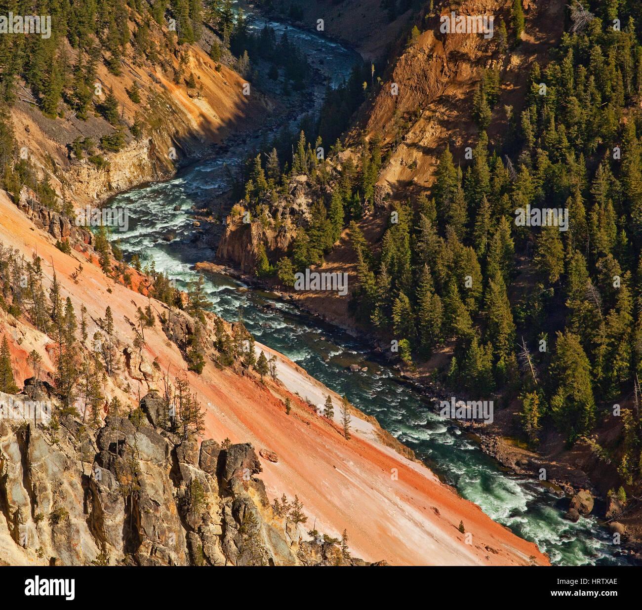 El Parque Nacional Yellowstone, Wyoming, EE.UU. Imagen De Stock