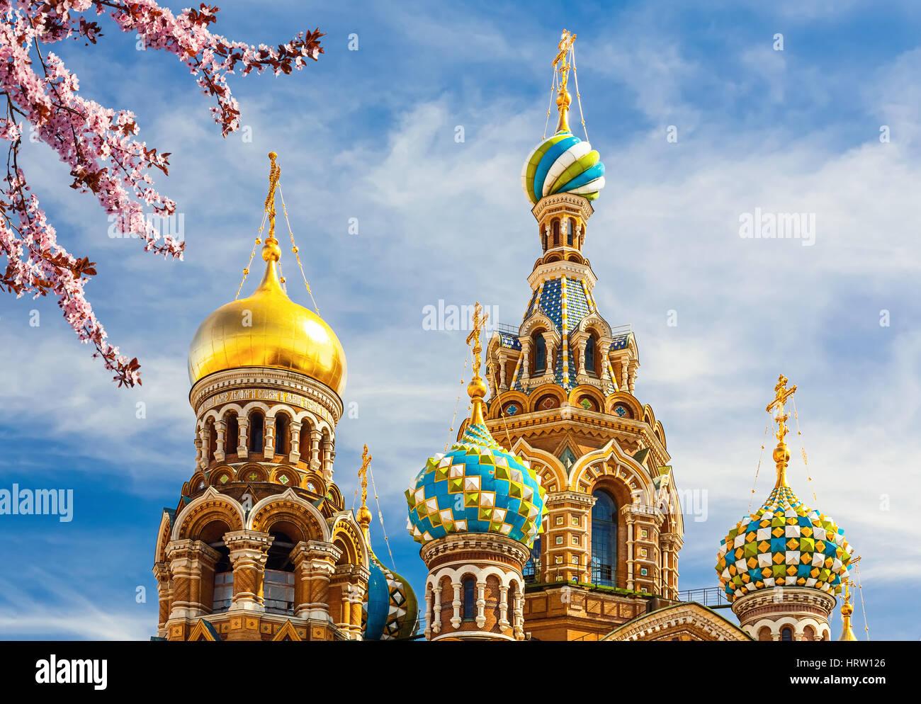 Iglesia del Salvador sobre la sangre derramada en San Petersburgo, Rusia Imagen De Stock