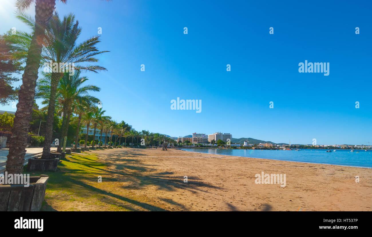 Filas de palmeras que bordean la playa, día soleado a lo largo de la orilla del mar en la isla de Ibiza, San Imagen De Stock