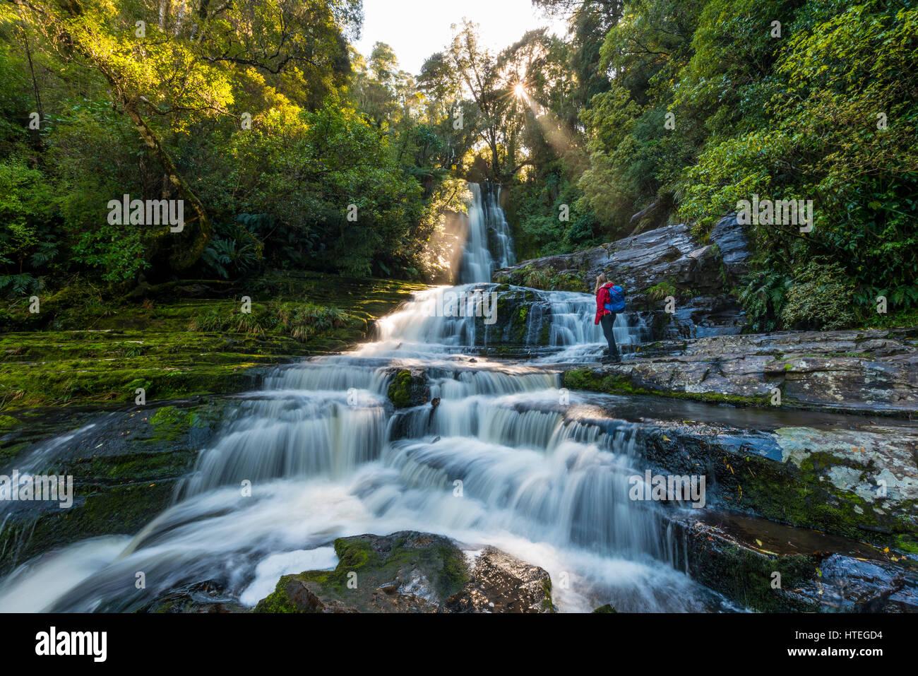Caminante en McLean cascada, Sun Star, los Catlins, Otago, Southland, Nueva Zelanda Imagen De Stock