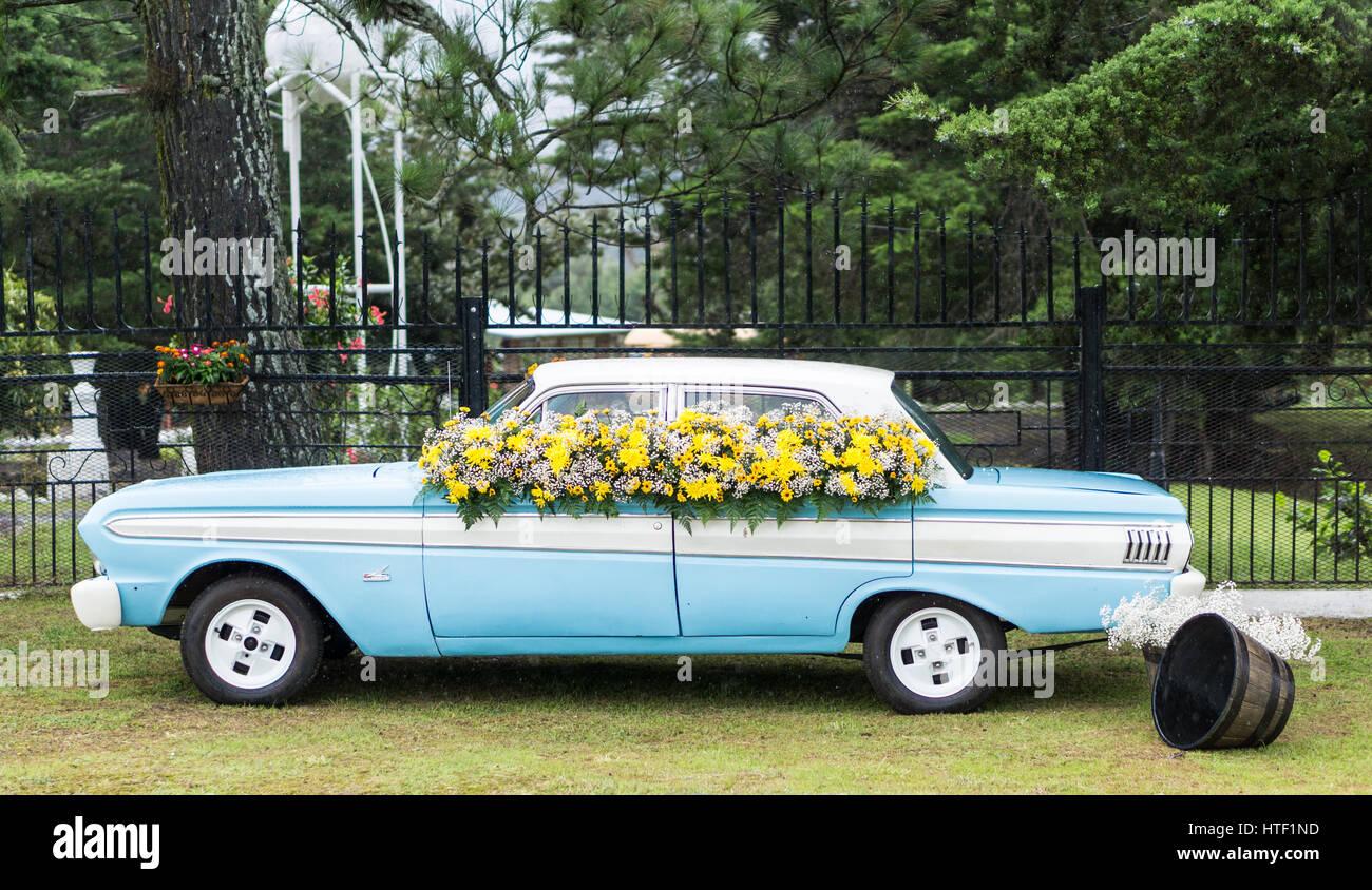 La parada de las Flores Imagen De Stock