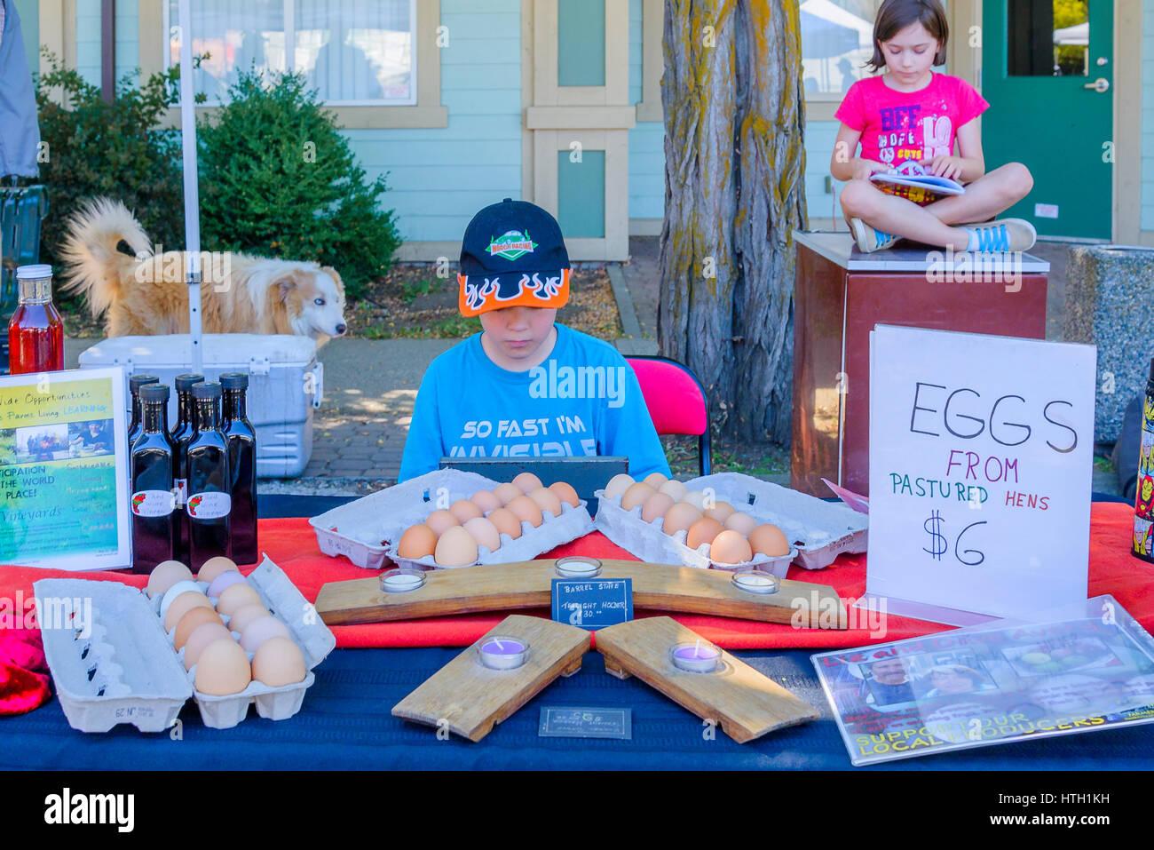 Los huevos para la venta en el mercado de los granjeros, Lytton, British Columbia, Canadá Foto de stock