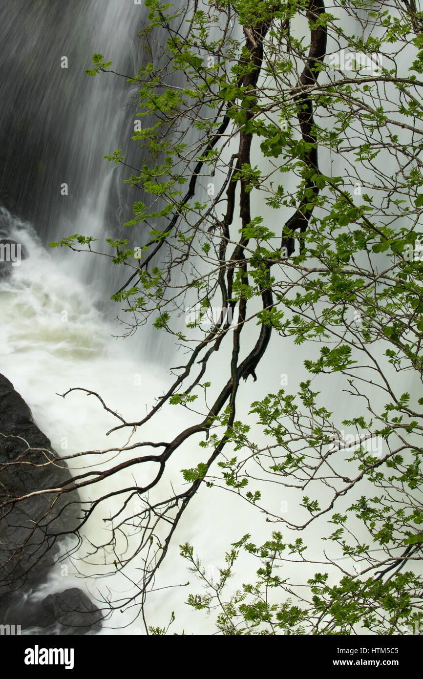 Sgwd Clun-Gywn cascada, Parque Nacional de Brecon Beacons, Wales, REINO UNIDO Foto de stock