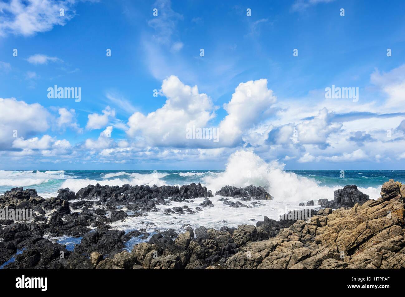Mar gruesa con grandes olas en la costa Minnamurra, Illawarra, Nueva Gales del Sur (NSW, Australia Imagen De Stock