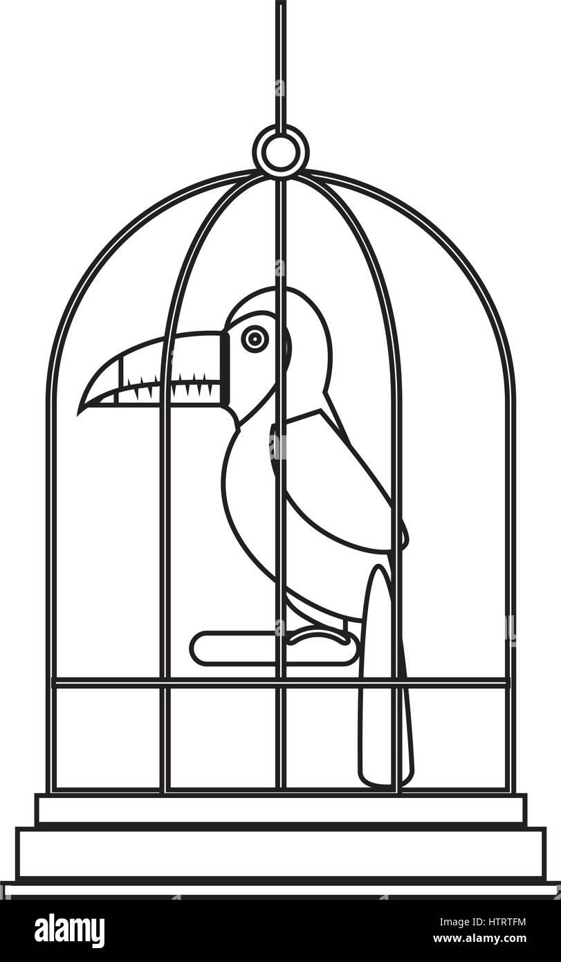 Cute Toucan Cartoon Imágenes De Stock Cute Toucan Cartoon