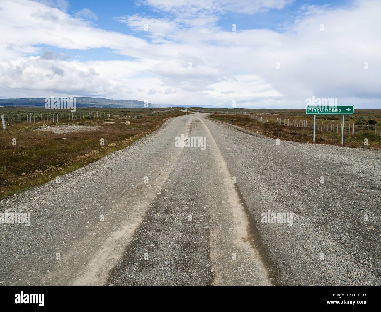 Carretera rural al Seno Otway pingüineras, cerca de Punta Arenas, Patagonia, Chile Imagen De Stock