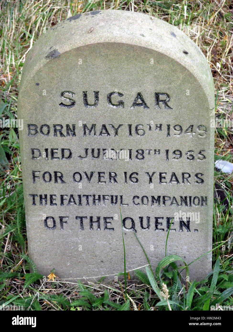 Las tumbas de la Reina Corgi's y otras mascotas en la familia real de Sandringham House, en Norfolk. Foto de stock