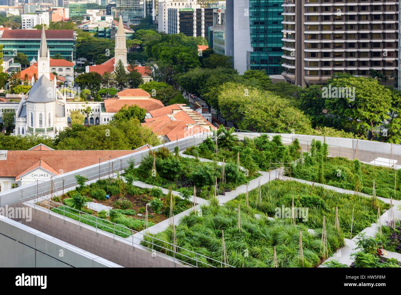 Jardín en la azotea en el Raffles City Shopping Centre, Singapur Imagen De Stock