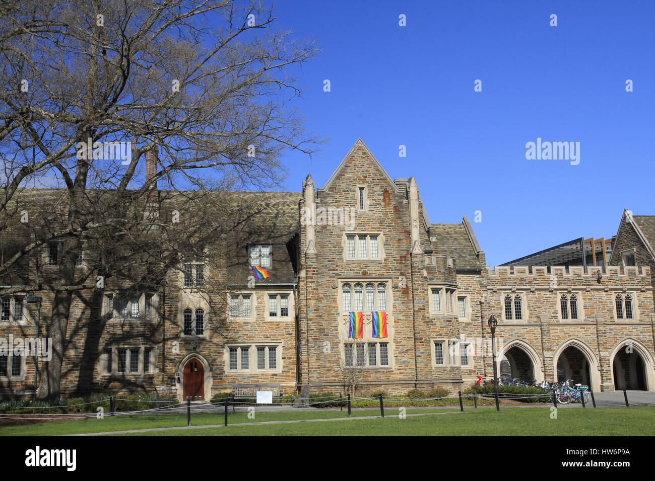 Banderas del Orgullo Gay colgando del dormitorio de la Universidad de Duke en Durham Carolina del Norte Imagen De Stock