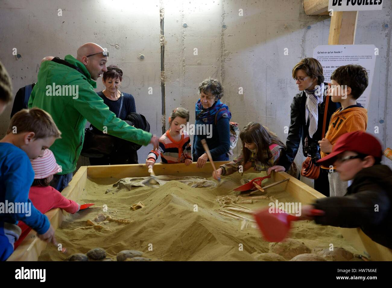 Francia, Doubs, Charbonnieres Les Sapins, Dino Zoo parque prehistórico, animada para niños excavaciones Imagen De Stock