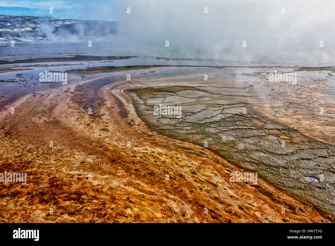 Mat bacteriana en Grand Prismatic Hot Spring, el Parque Nacional Yellowstone, Wyoming. Foto de stock