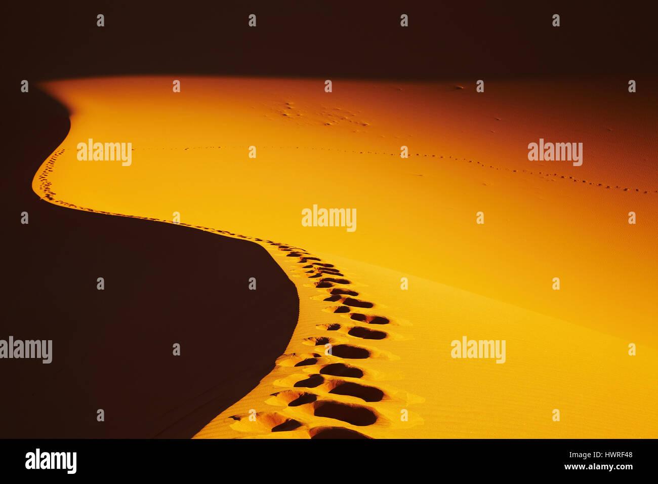Huellas en una duna de arena, el desierto del Sahara, Argelia Imagen De Stock