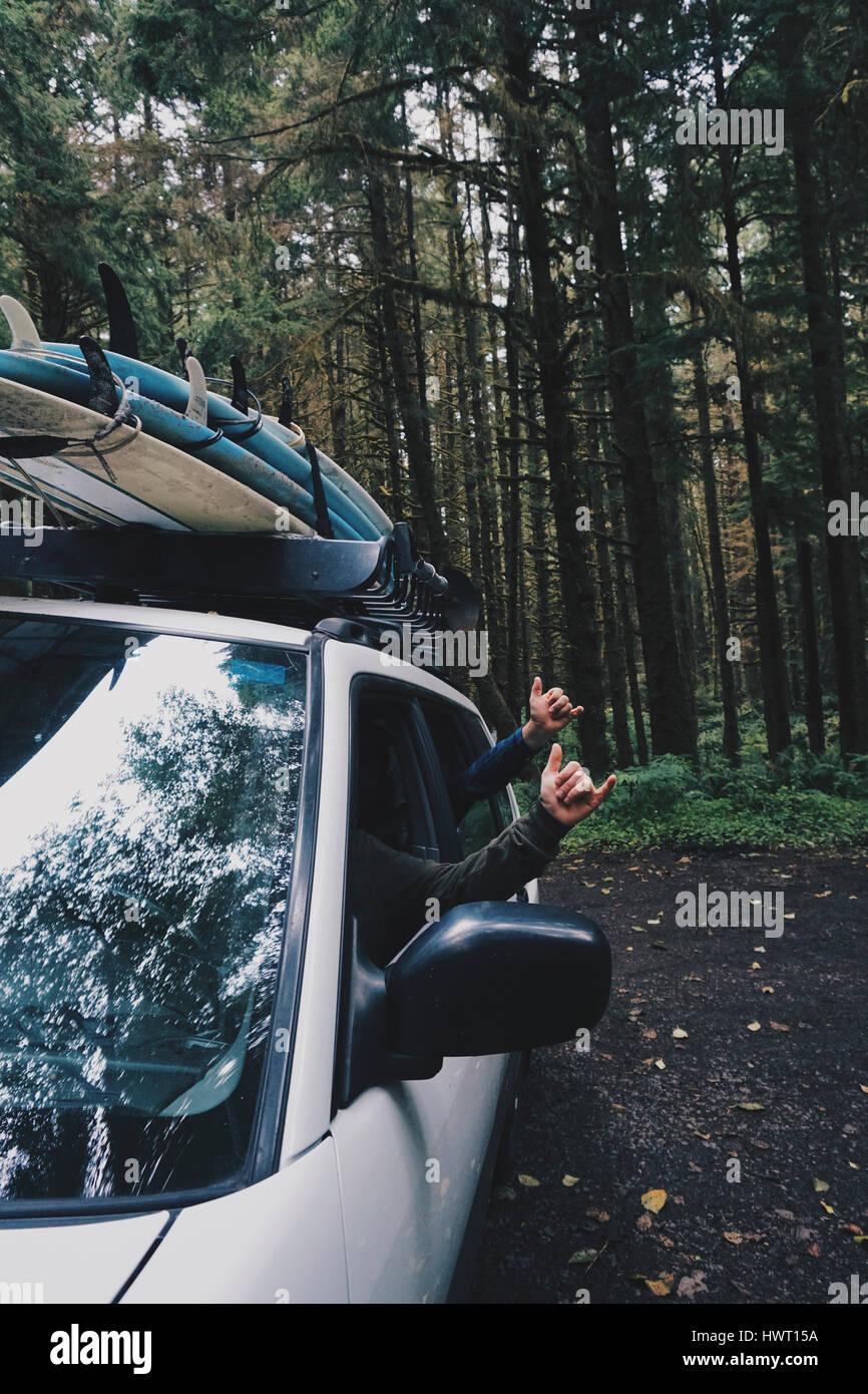 Manos recortadas de amigos varones gesticulando de ventanilla en el bosque Imagen De Stock