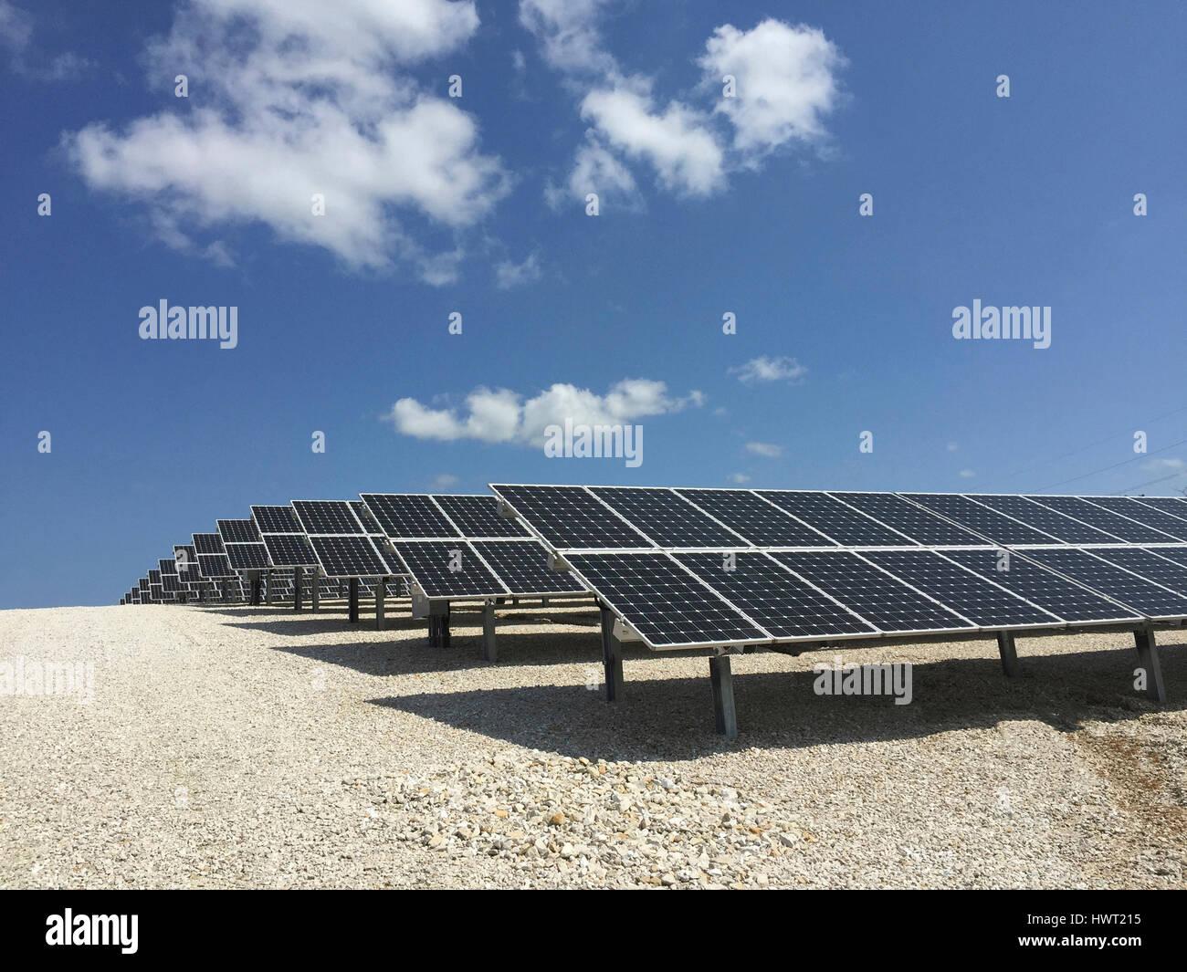 Paneles solares en el campo contra el cielo azul durante el día soleado Imagen De Stock