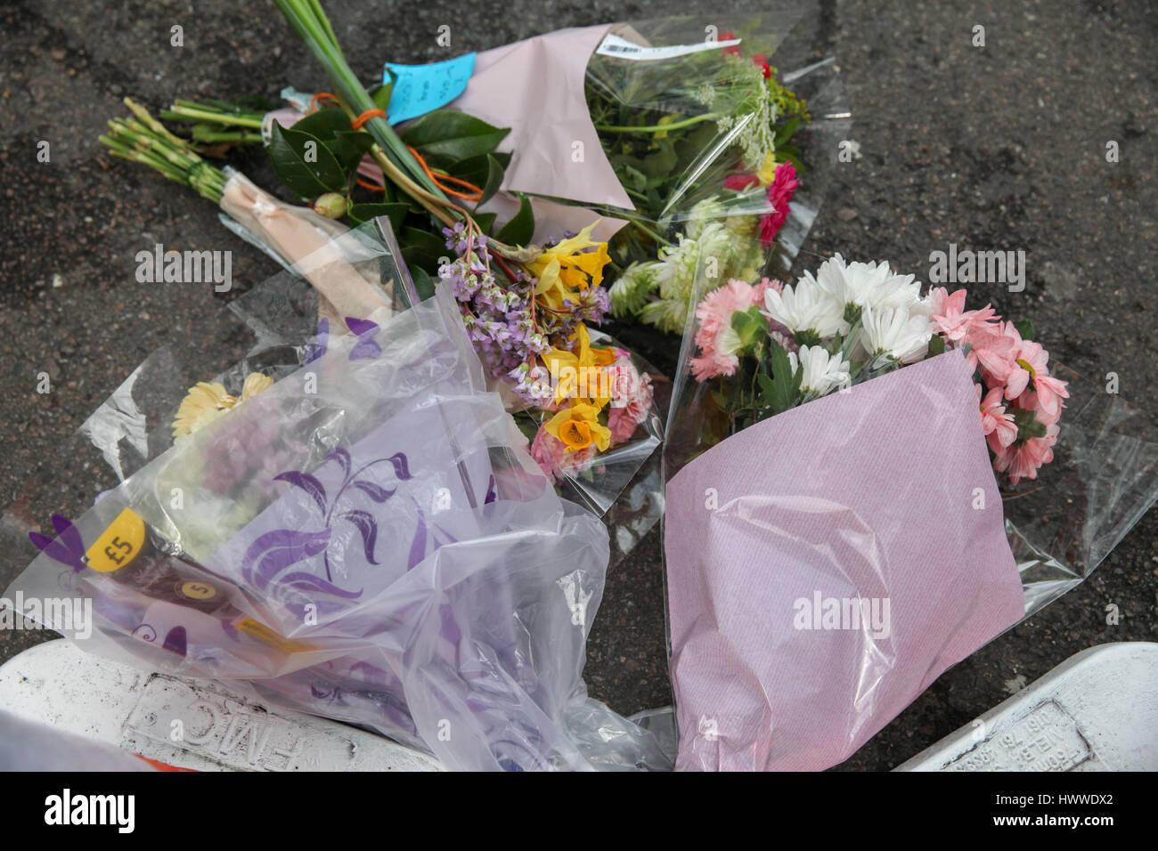 Westminster, London, UK 23 Mar 2017- homenajes florales en Westminster Bridge. Scotland Yard dijo el 23 de marzo de 2017 que la policía ha realizado siete arrestos en redadas realizadas durante la noche en Birmingham, Londres y otras ciudades en el país tras el ataque terrorista en el Palacio de Westminster y el puente de Westminster, el 22 de marzo de 2017, dejando un saldo de cuatro muertos, incluido el atacante, y 29 personas resultaron heridas. Crédito: Dinendra Haria/Alamy Live News Foto de stock