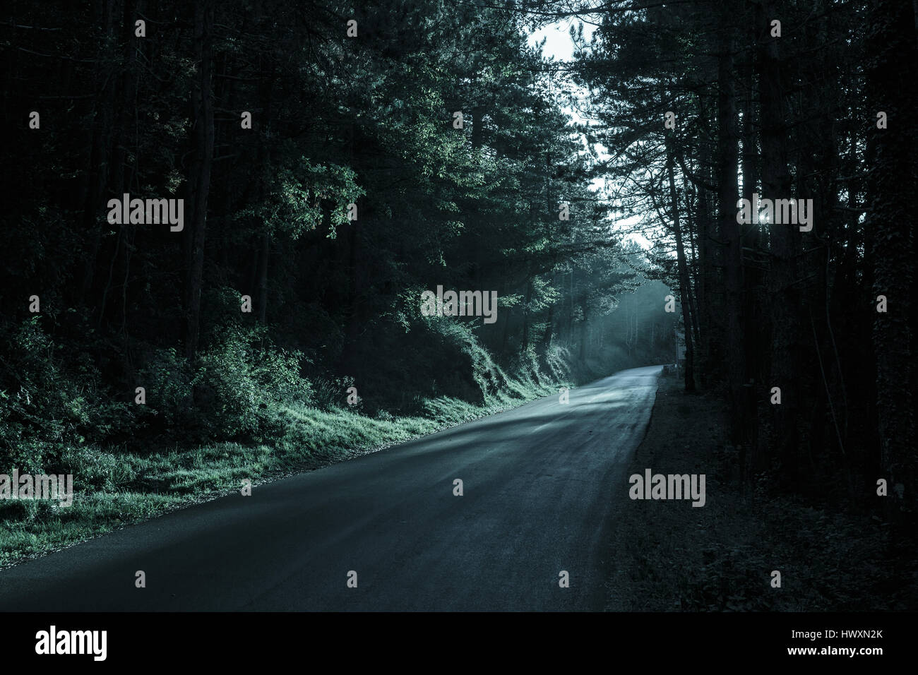 Spooky bosque oscuro con carretera vacía en desaparecía la luz. Emocional, gótico, de fondo inquietante Imagen De Stock