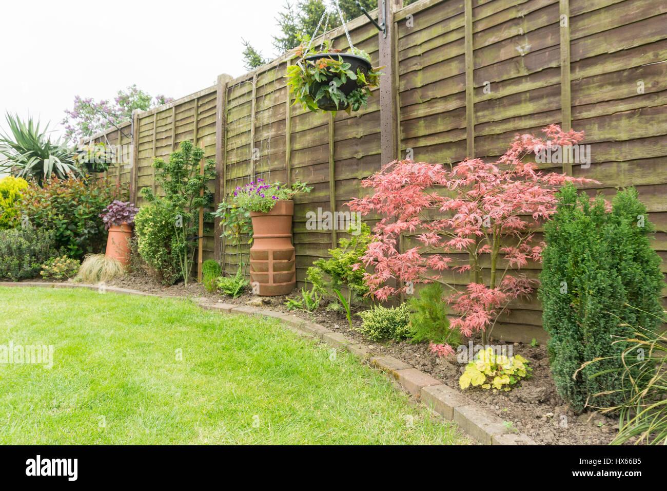 Un jardín en el verano Imagen De Stock