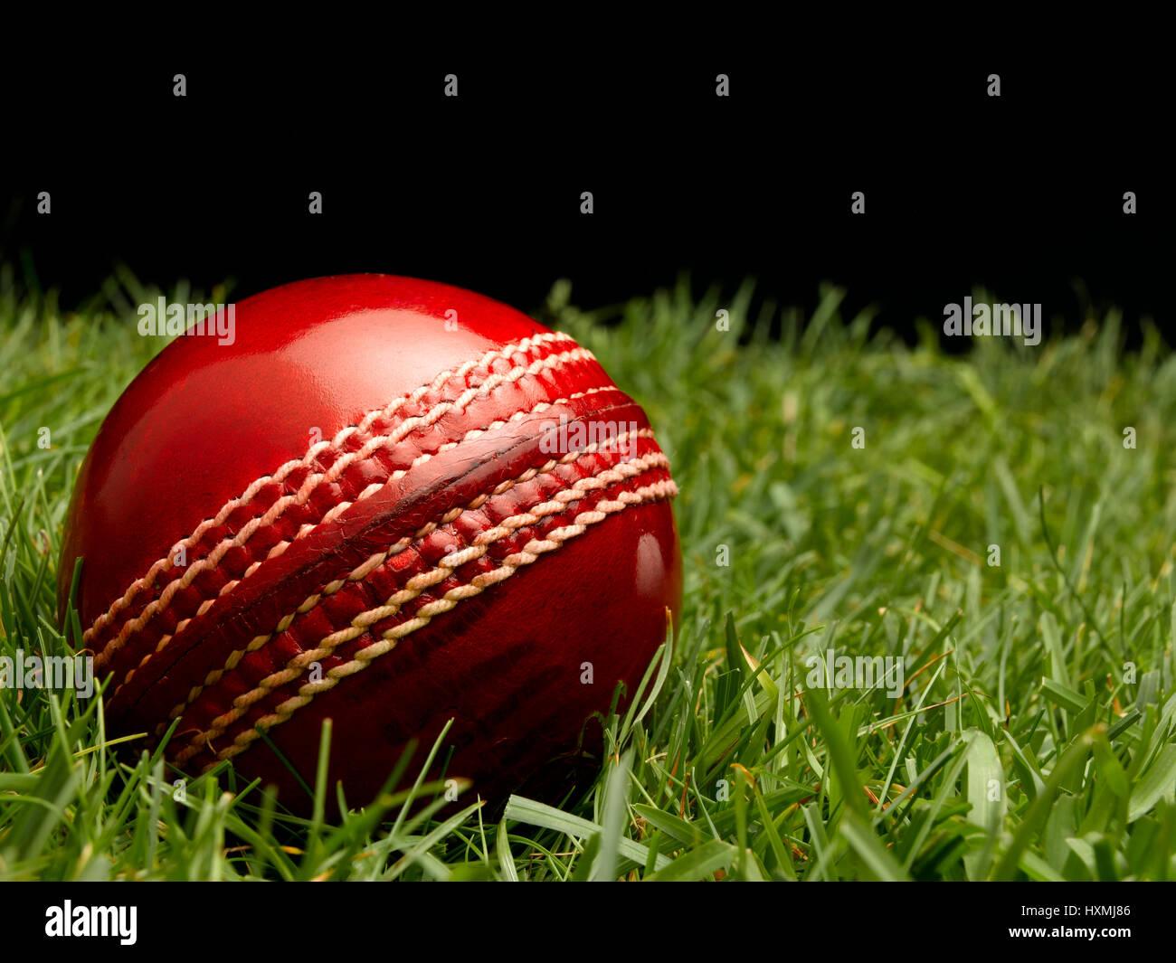 Bola de Cricket de cuero rojo Foto de stock
