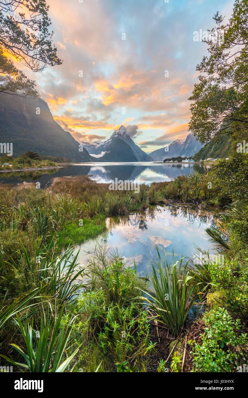 Mitre Peak, puesta de sol, Milford Sound, el Parque Nacional Fiordland, Te Anau, región de Southland Southland, Imagen De Stock