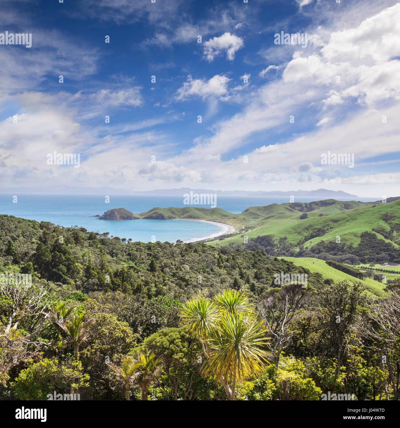 La bahía de Port Jackson, Coromandel, Nueva Zelandia. Imagen De Stock