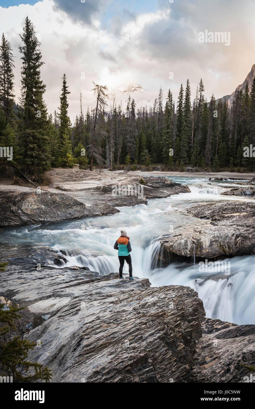 Mujer de pie en cascada, Puente Natural Falls, el Kicking Horse River, el Parque Nacional Yoho, Field, British Columbia, Foto de stock