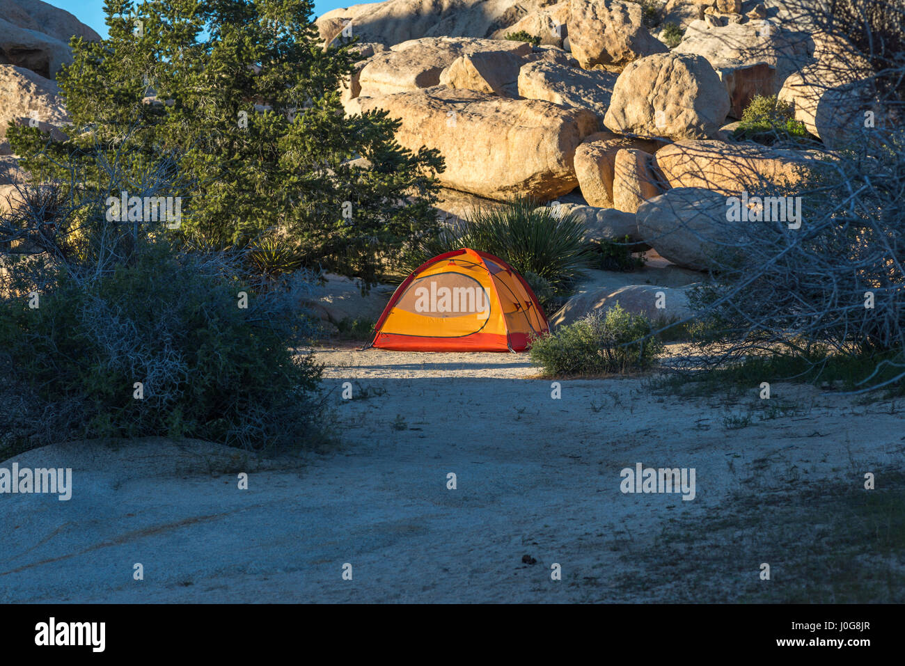 Tienda de acampar en el Parque Nacional de Joshua Tree, en California, Estados Unidos. Imagen De Stock