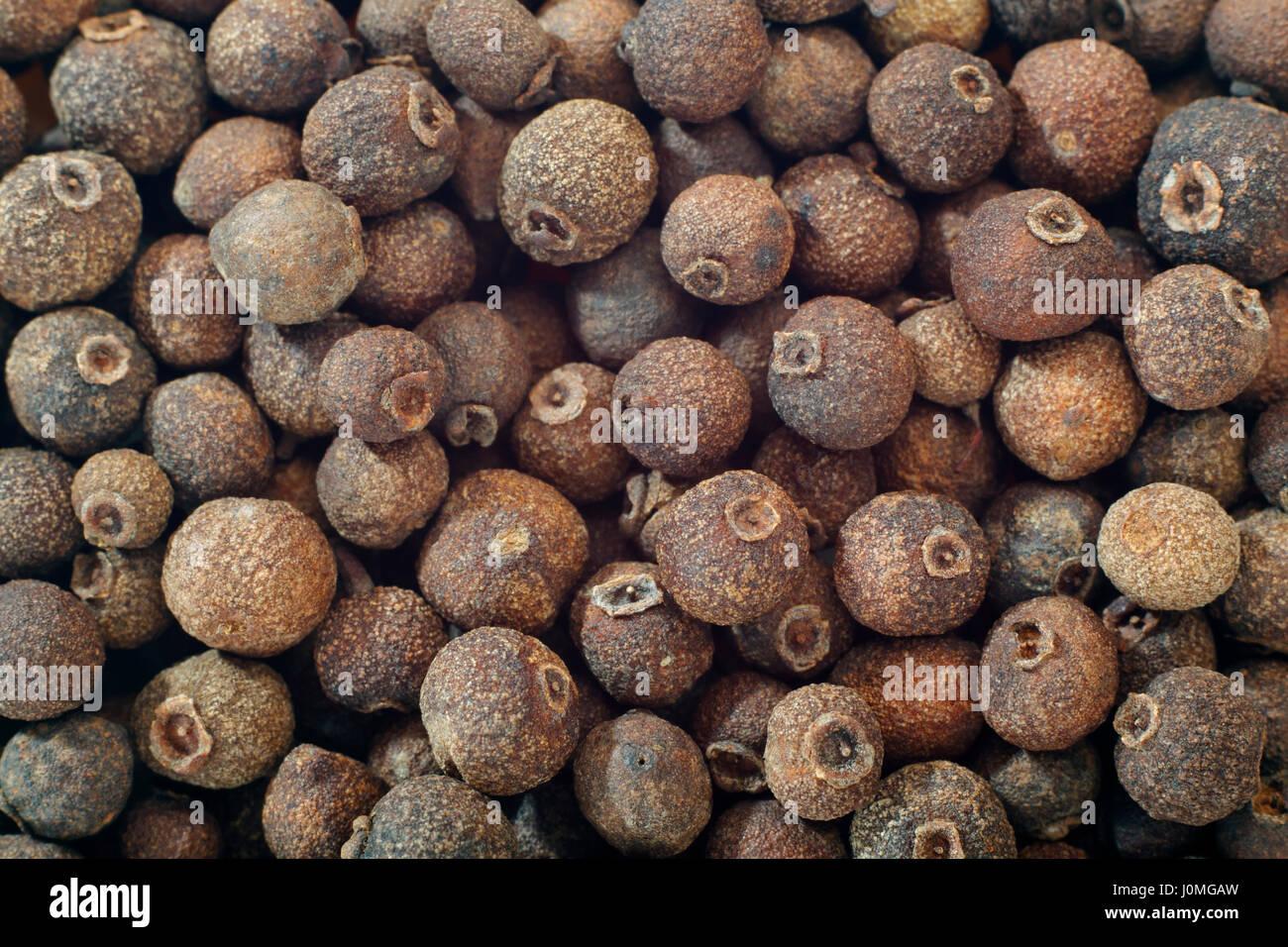 Pimento Pimenta Dioica Imágenes De Stock & Pimento Pimenta Dioica ...