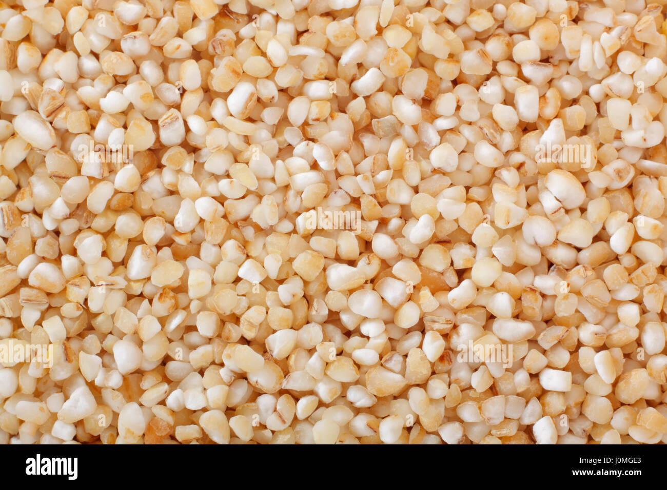 Barley Hordeum Distichon Hordeum Vulgare Imágenes De Stock & Barley ...