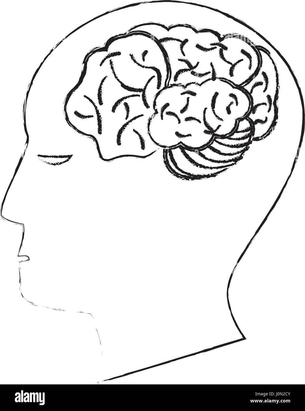 Cabeza cerebro humano creatividad boceto Imagen De Stock
