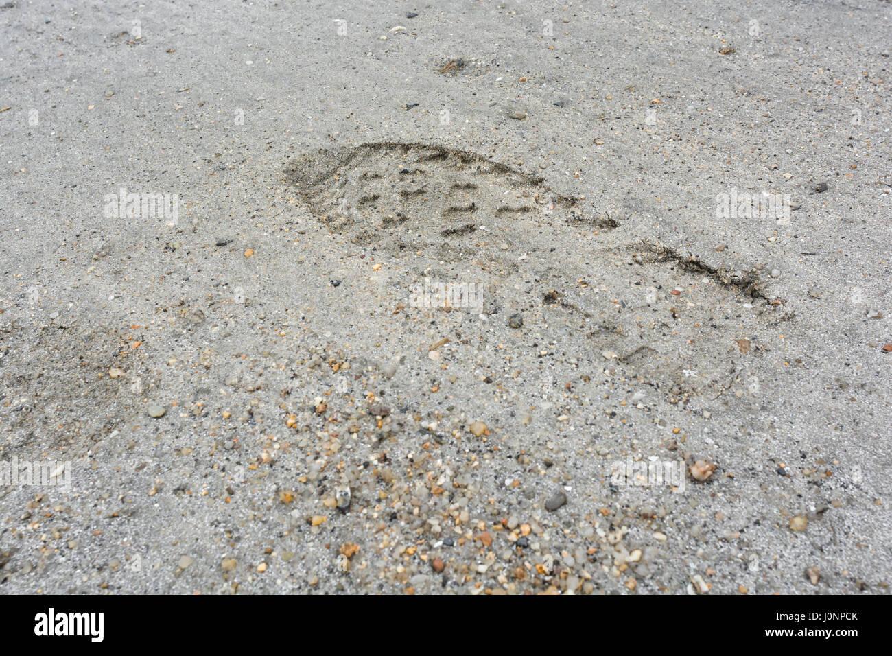Las huellas humanas en Sandy Beach (Par, Cornualles). Posible metáfora para dejar su marca o incluso la huella Imagen De Stock