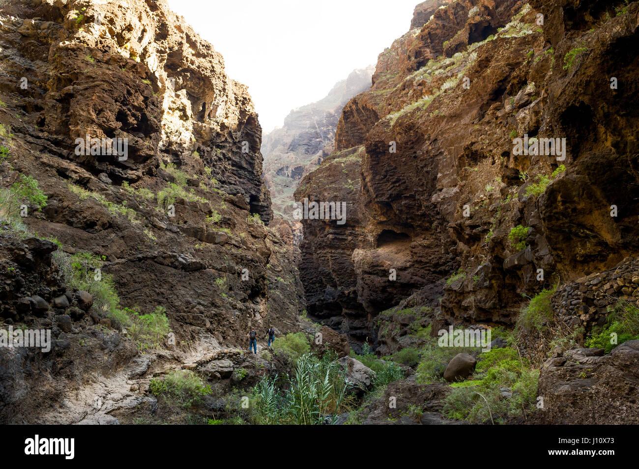 Masca trekking, Tenerife Imagen De Stock