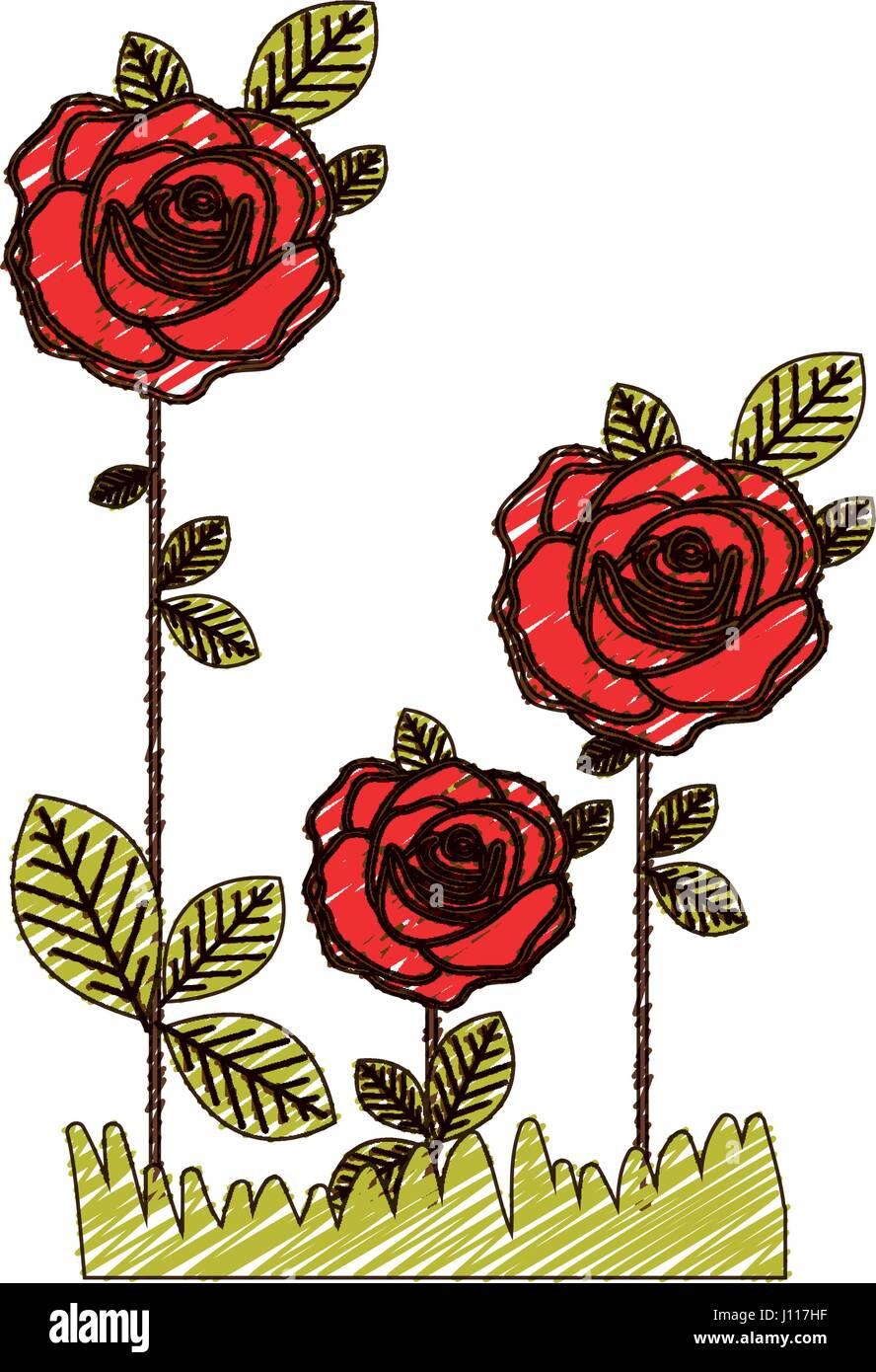 Dibujo A Lápiz De Color De Rosas Flores Plantadas Con Hojas Y Pasto
