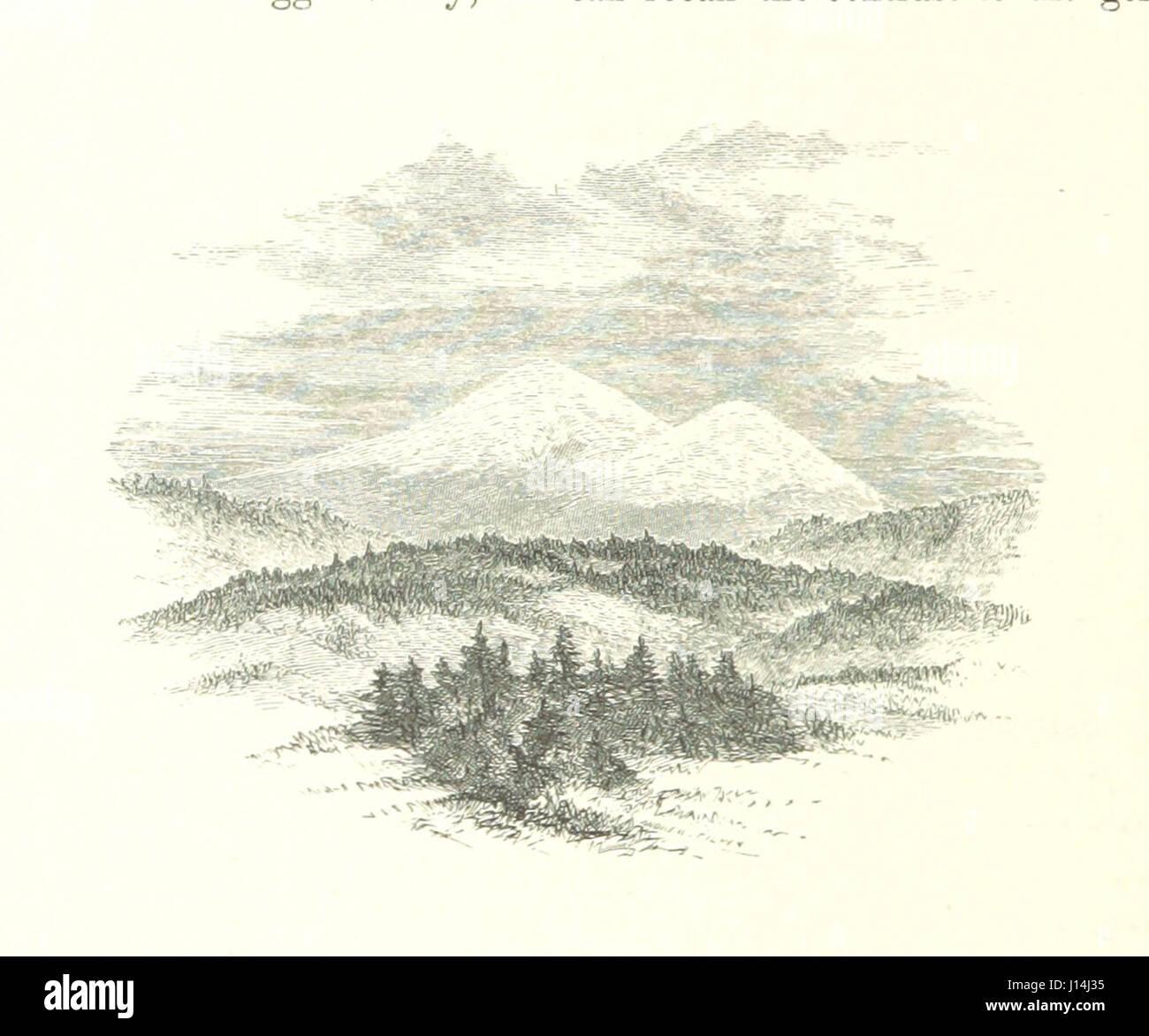 1e14169dac40 Las blancas colinas; sus leyendas, paisaje y poesía. Con 60 ilustraciones  grabadas por Andrés, desde dibujos de Wheelock. F.P