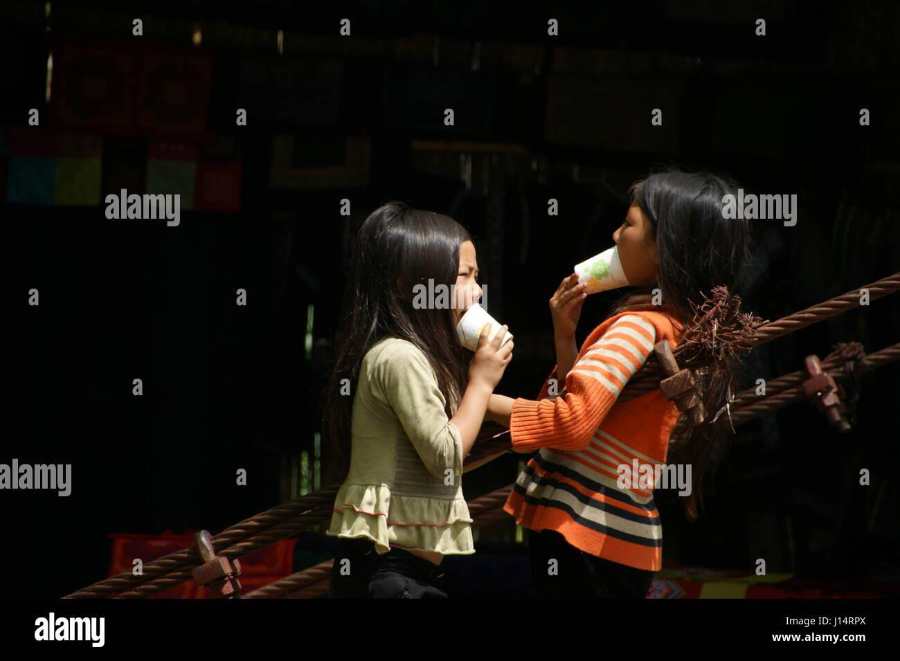 Las niñas vietnamitas están jugando. Los niños vietnamitas. Las minorías nacionales en Sapa. Imagen De Stock