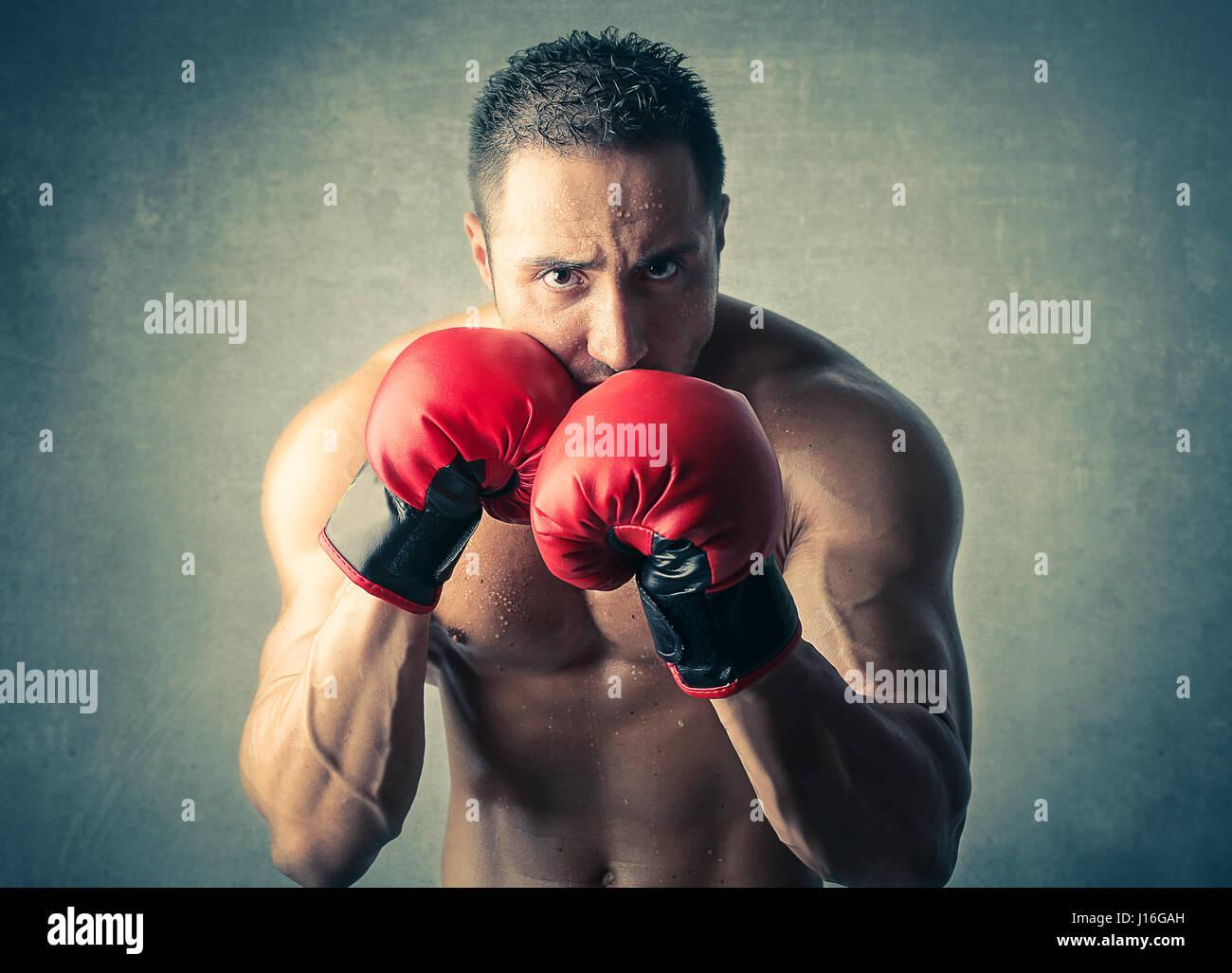 El hombre muscular con guantes de boxeo Imagen De Stock
