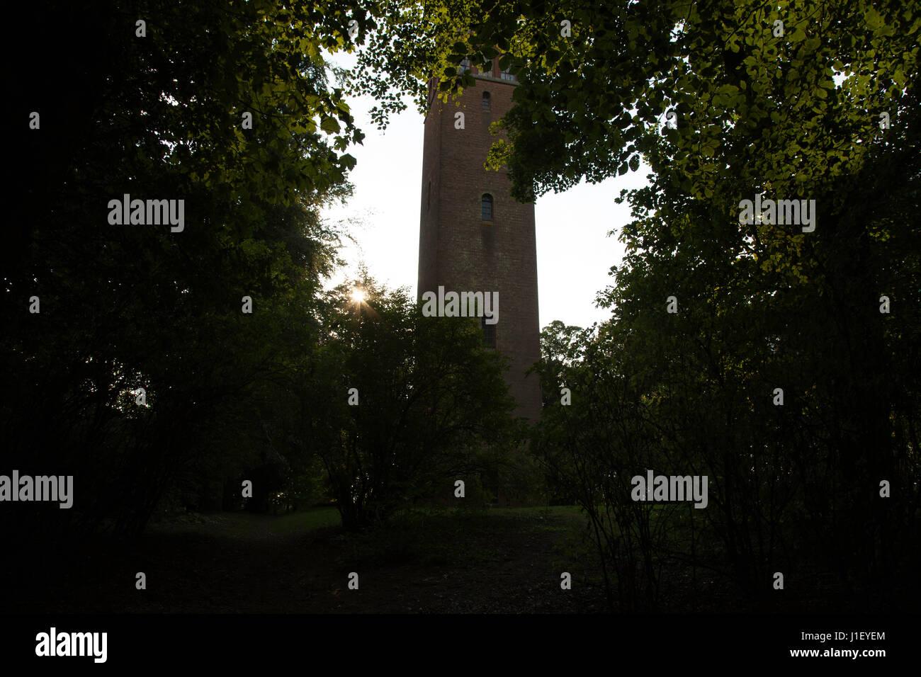La locura de la torre, enmarcado por árboles, en la locura, Faringdon Hill, Oxfordshrie Imagen De Stock