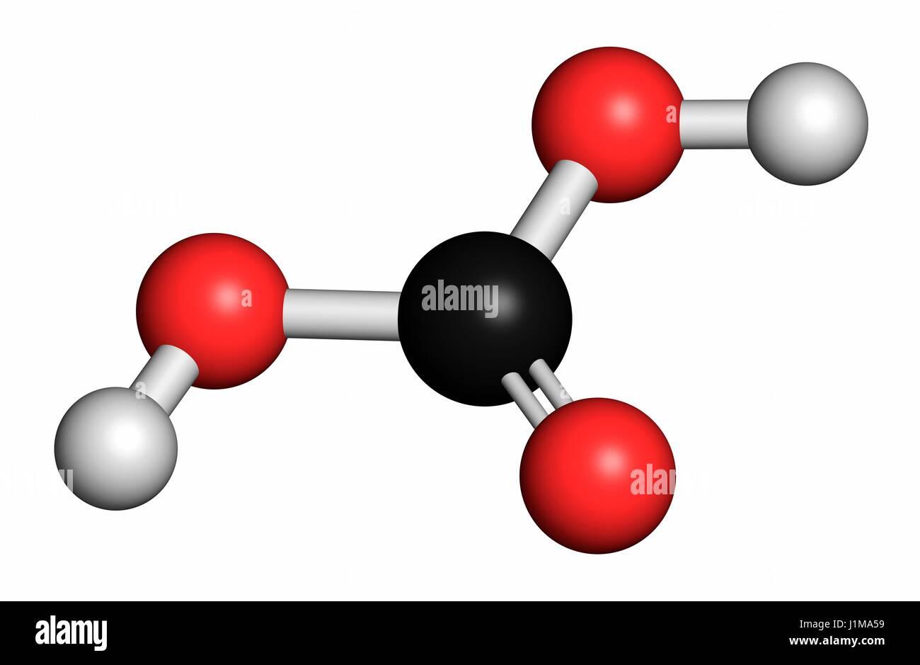 Molécula de ácido carbónico. Se formó cuando el dióxido de carbono se disuelve en el agua Imagen De Stock