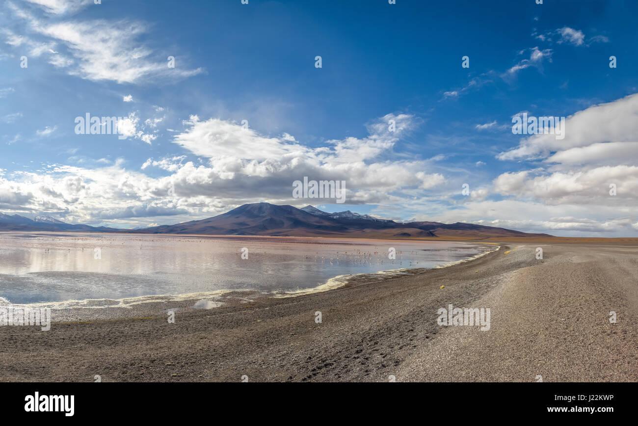 La Laguna Colorada (rojo) en el altiplano Bolivean Laguna - El Departamento de Potosí, Bolivia Imagen De Stock
