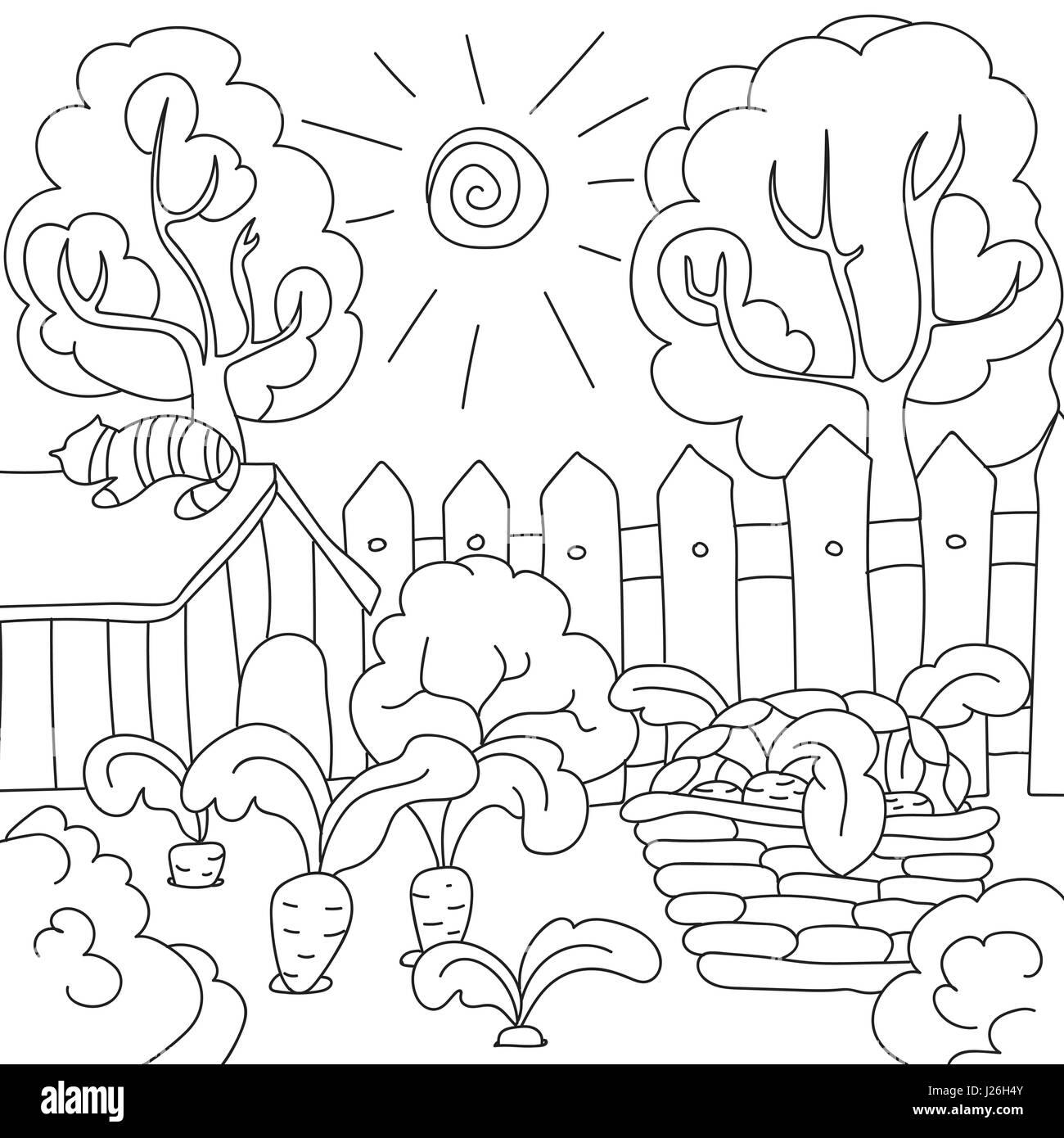 Libro Para Colorear De Vectores Zanahorias En El Jardín