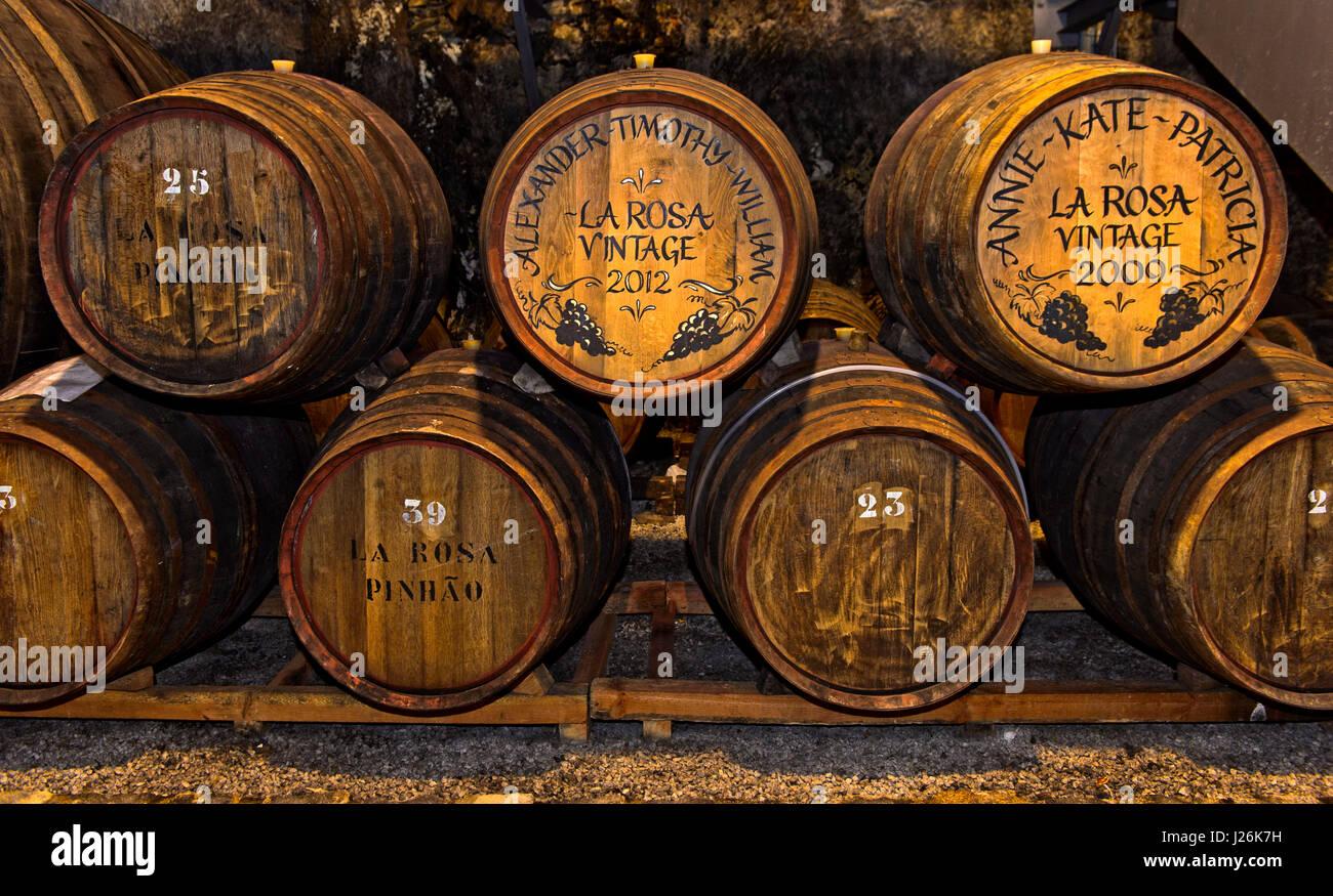 Puerto personalizado barriles de vino en una bodega de vinos, Quinta de la Rosa, Pinhao, Alto Douro, Portugal Imagen De Stock
