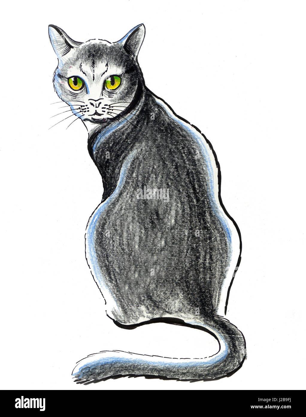 Gato Sentado Dibujo A Lápiz Foto Imagen De Stock 139161222 Alamy