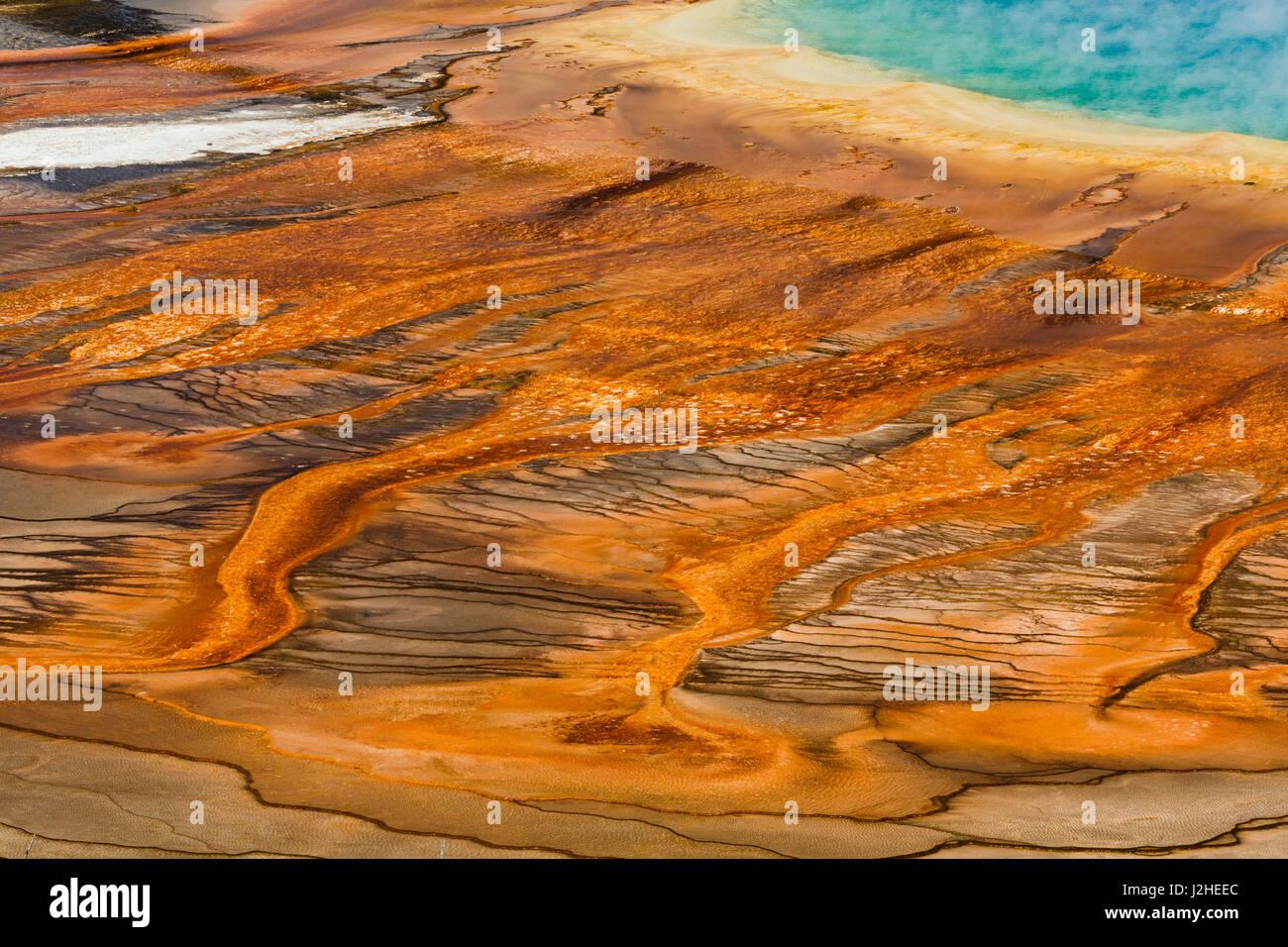 Vista elevada de bacterias mat, Grand Prismatic Spring, Midway Geyser Basin, el Parque Nacional de Yellowstone (Montana, Wyoming) Foto de stock