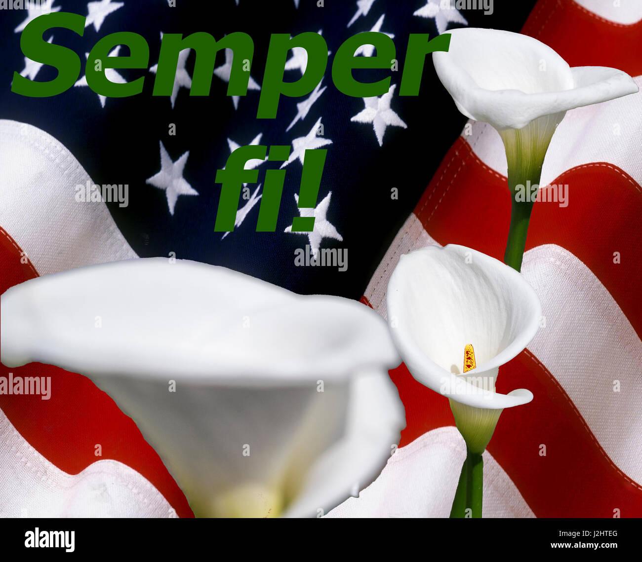 Semper Fi! Con callalily flores Foto de stock