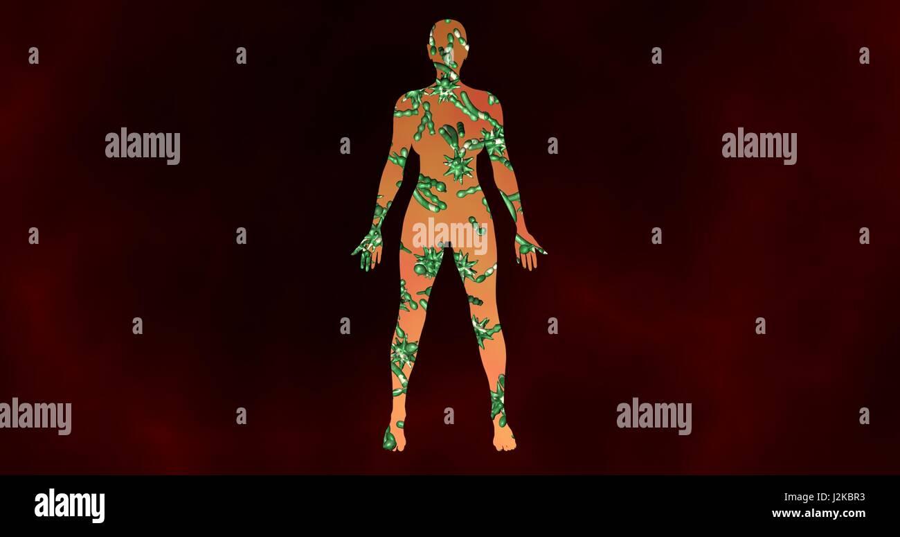 Un microbioma las bacterias, los virus, los microbios dentro del ...