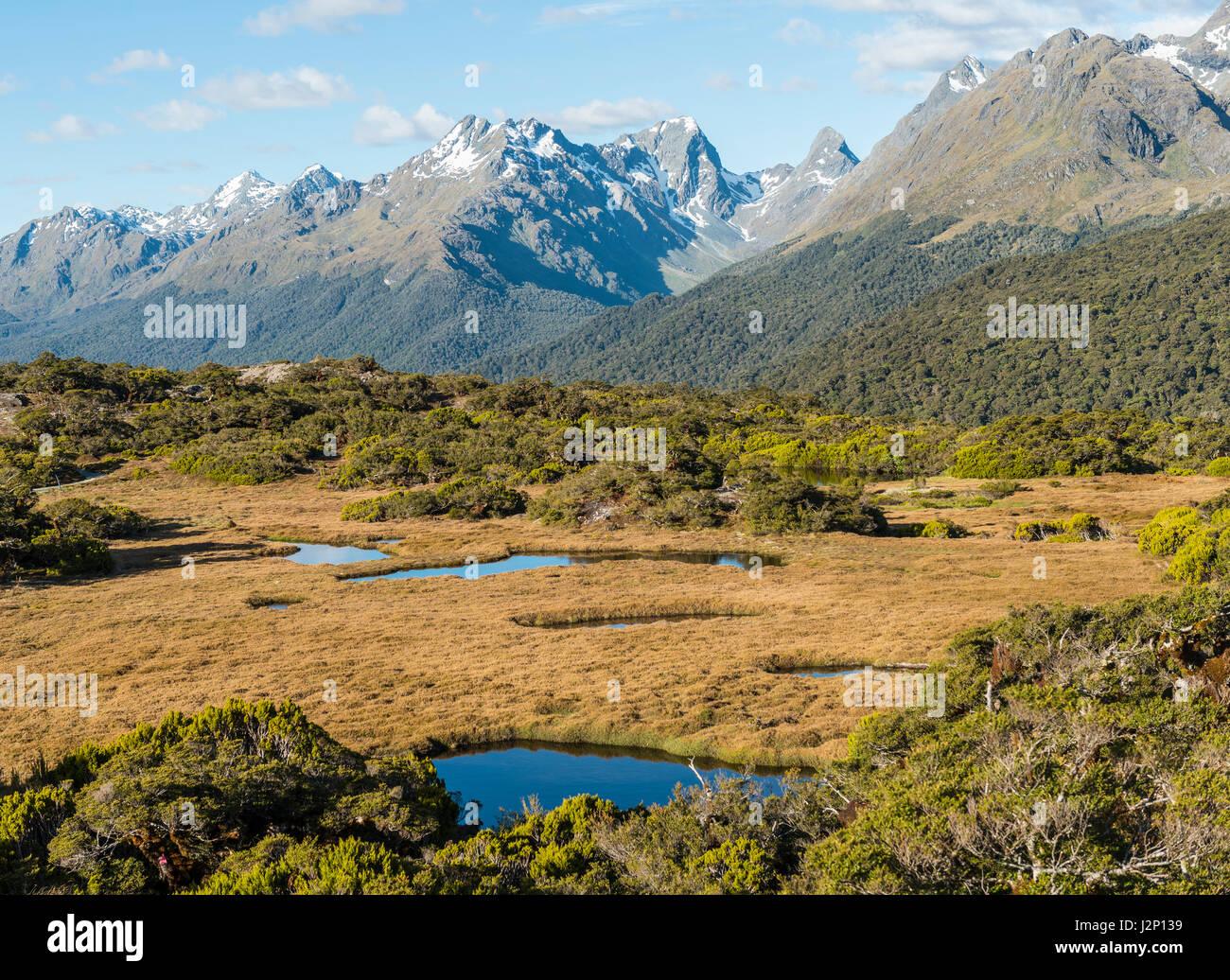 Vista de Little Mountain Lake y Ailsa Montañas, Vía fundamentales de la Cumbre, el Parque Nacional Fiordland Imagen De Stock