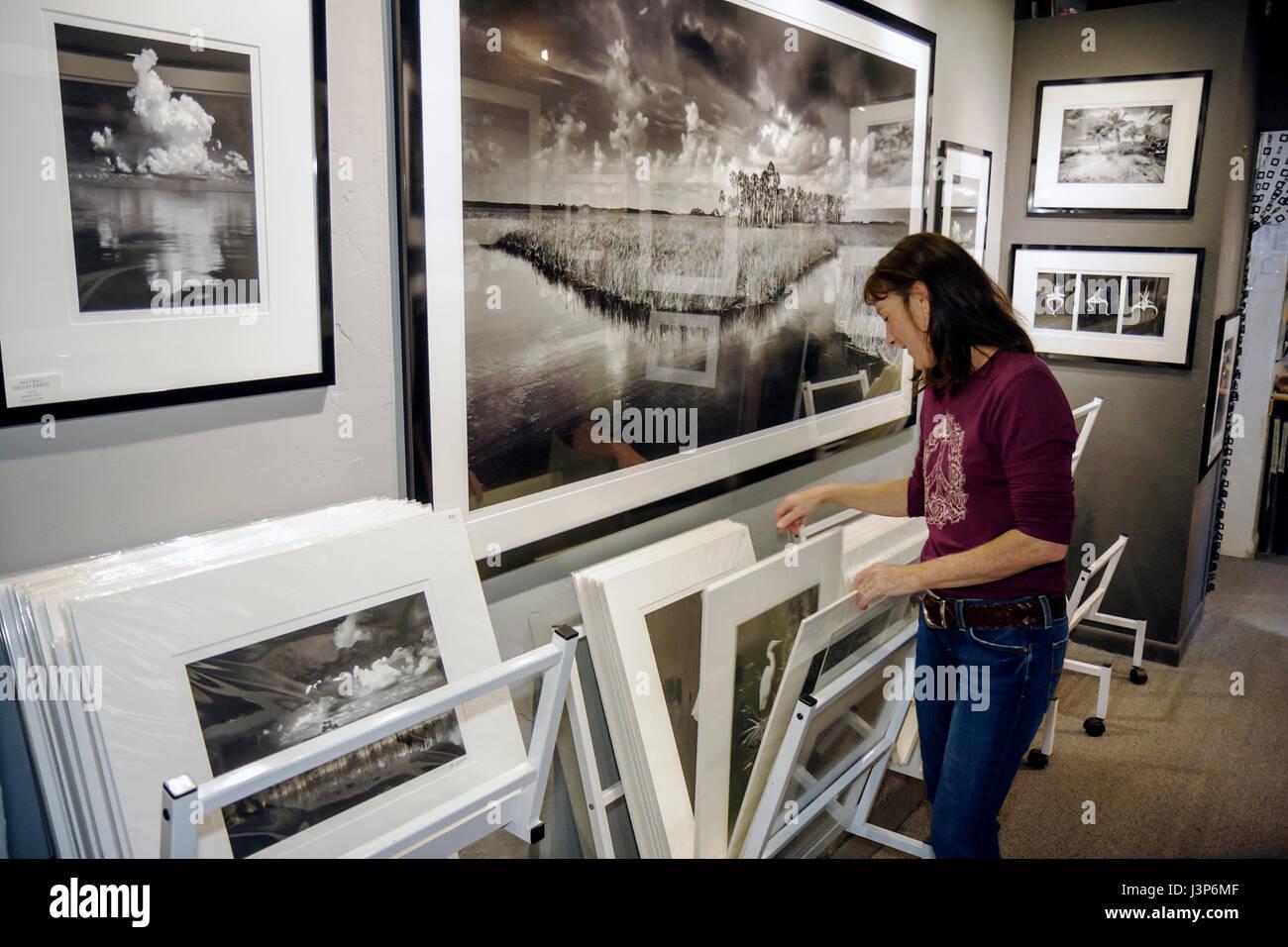 Florida, FL, Sur, los Everglades, Ochopee, Tamiami Trail, Big Cypress Gallery, Clyde Butcher, fotografía en blanco y negro, fotógrafo, paisaje, Foto de stock