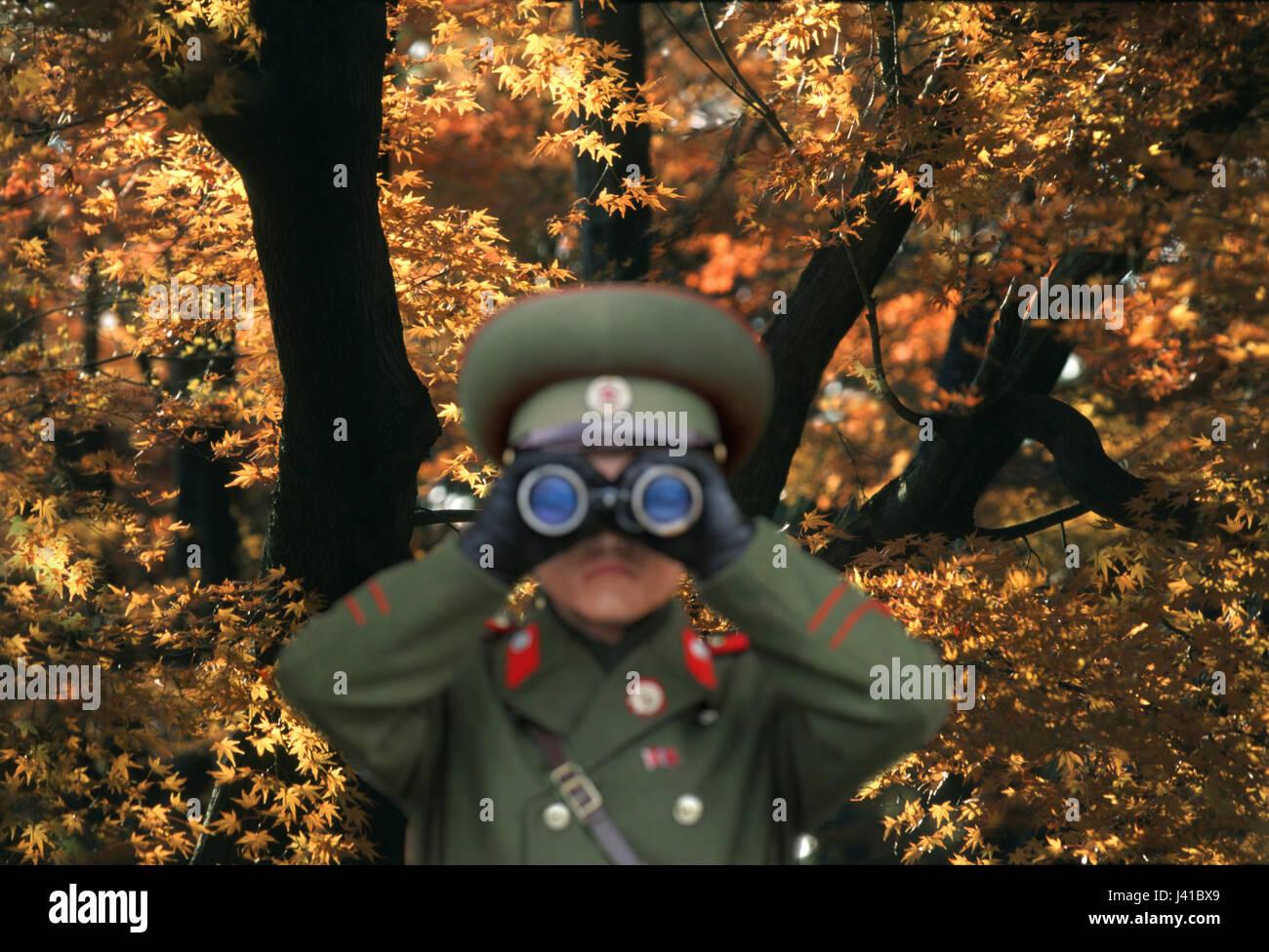 Soldado mirando a través de binoculares, militar, árbol otoñal, en el fondo, Kumgangsan, Corea del Imagen De Stock