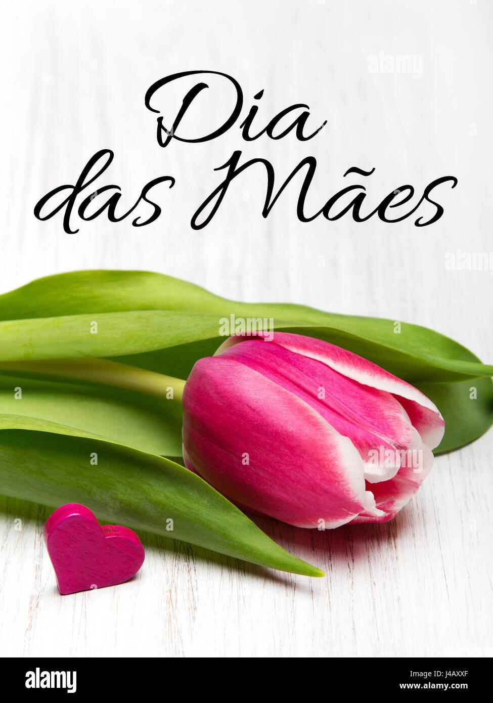 Tarjeta Del Día De La Madre Con El Portugués Palabras Feliz Día De