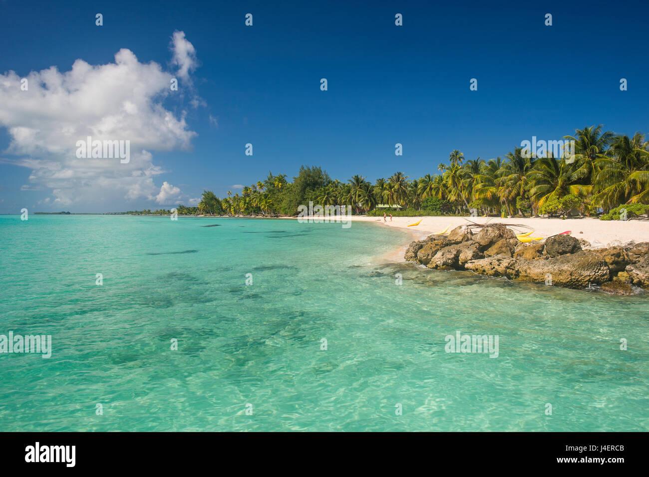Hermosa playa de arena blanca bordeada por palmeras en las aguas turquesas de Tikehau, Tuamotus, Polinesia Francesa, Foto de stock
